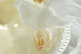 Biały sernik na zimno z galaretką i kwiatami storczyka